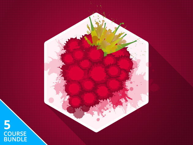 Raspberry Pi Hacker Bundle